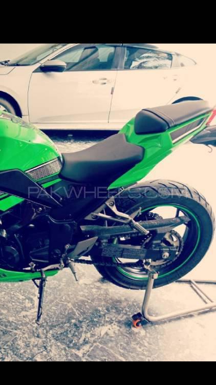 Kawasaki Ninja 250R 2013 Image-1
