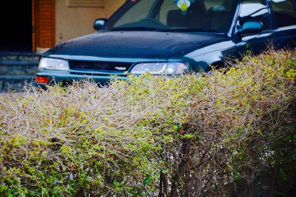 Toyota Corolla - 2000 Solla La Belleza Image-1